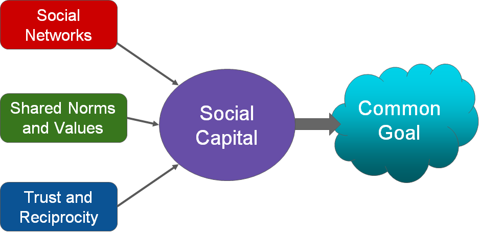 Three bubbles showing components with arrows leading to a large bubble labeled 'Social Capital', which then has an arrow leading to a cloud labeled 'Common Goal'. The three small bubble components are labeled 'Social Networks', 'Shared Norms and Values', and 'Trust and Reciprocity'.